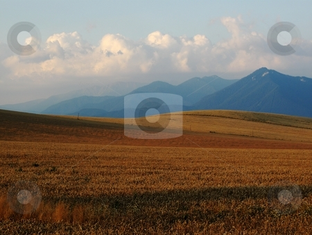 Field on mountains in morning light stock photo, Filed on hills woth mountain in backround by Juraj Kovacik