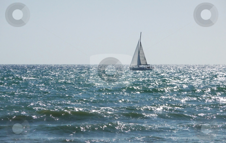 Sail Boat In Sea On Brighton Coast stock photo, A sail boat just of the Brighton coast. by Chris Harvey