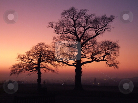 Red Sunset with Two Trees over Looking London stock photo, Red Sunset with Two Trees over Looking London by Stephen Lambourne