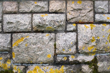 Old Stone Wall stock photo, An old stone wall texture that is weathered and covered with some light moss. by Todd Arena