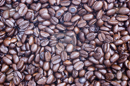 Coffee Beans stock photo, Fair Trade Pure Columbian whole coffee beans by Stephen Meese