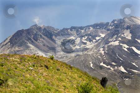 Caldera Lava Dome Mount Saint Helens Volcano National Park Washi stock photo, Caldera Lava Dome Close Up Mount Saint Helens Volcano National Park Washington by William Perry