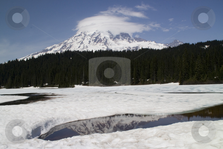Icy Reflection Lake, Mount Rainier National Park in June stock photo, Reflection Lake Iced Over and Thawing, June, Mount Rainier National Park by William Perry