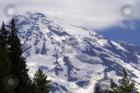 Mount Rainier with Eagles stock photo, Eagles flying up near summit of Mount Rainier by William Perry