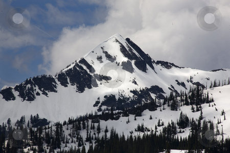 Snow Covered Mountain Rainier National Park Washington stock photo, Snowy Covered Mountain Rainier National Park Washington Snow in June by William Perry