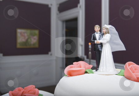 Wdding stock photo, A wedding couple by Fredrik Elfdahl