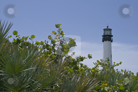 Lighthouse stock photo, A lighthouse on the beach by Fredrik Elfdahl