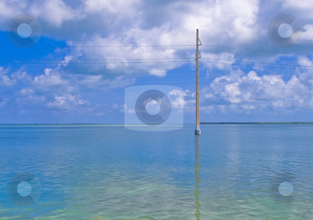 Telephone line stock photo, Telephone line standing in the water by Fredrik Elfdahl