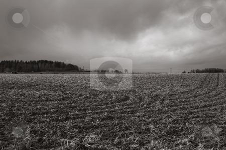 Farmland stock photo, Farmland by Fredrik Elfdahl