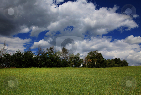 Mountain Farm stock photo, High mountain farm with blue sky and clouds by Mark Smith