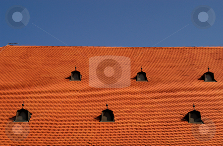 Roof of the Bishop's Wine Cellar stock photo, Hungary, Pecs, Tile Roof of the Bishop's Wine Cellar by David Ryan