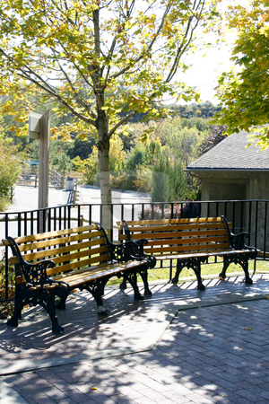 Benches in a Park stock photo, Benches in a Park under the Trees by Mehmet Dilsiz