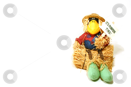 Halloween Decoration  stock photo, Halloween Decoration - Crow by Mehmet Dilsiz