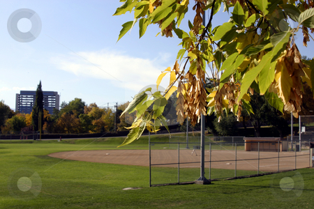 Baseball Field with Leaves in Focus stock photo, Empty Baseball Field with Leaves in Focus by Mehmet Dilsiz