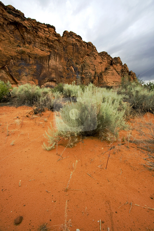 Snow Canyon - Utah stock photo, Snow Canyon in St. George, Utah by Mehmet Dilsiz