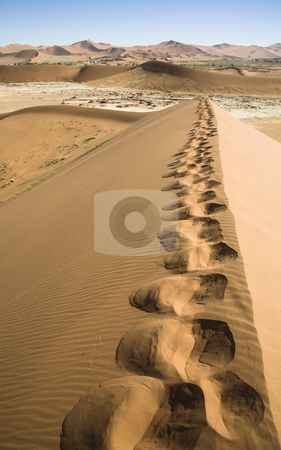 Footprints stock photo, My footprints on a huge dune, Sossusvlei, Namib Desert, Namib-Naukluft National Park, Republic of Namibia, Southern Africa by mdphot