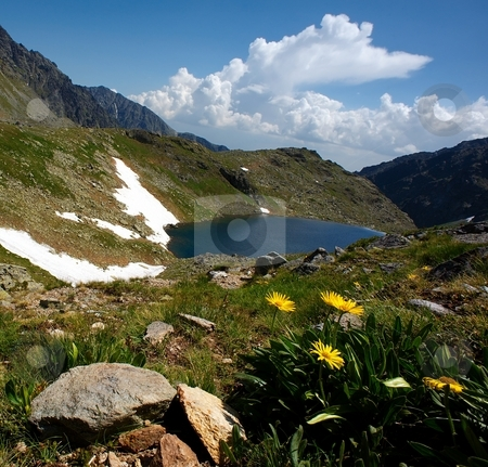 Mountain lake and big yellow flowers detail stock photo, Mountain lake and big yellow flowers detail in summer day by Juraj Kovacik