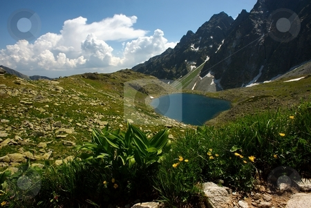 Small mountain lake with flowers in foreground stock photo, Small mountain lake on plateau with flowers in foreground in sunny day with clouds on horizon by Juraj Kovacik