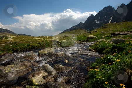 Drifting mountain creek on plateau stock photo, Drifting mountain creek on plateau in sunny summer day with some clouds and yellow flowers by Juraj Kovacik