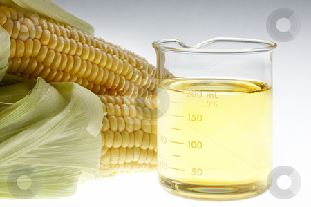 Bio Fuel still life stock photo, Beaker of of ethanol and ears of corn shot on lightbox by James Barber