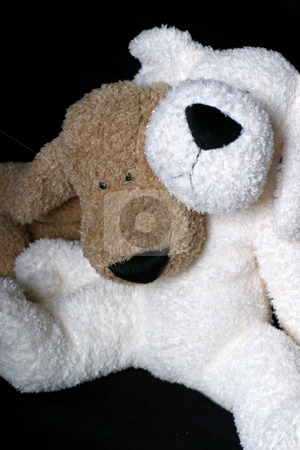 Puppy hug stock photo, Two stuff dog, a brown and a white, hugging each other by Yann Poirier