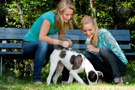 Two sisters and a dog stock photo, Two blond girls and a american bulldog in the park by Frenk and Danielle Kaufmann