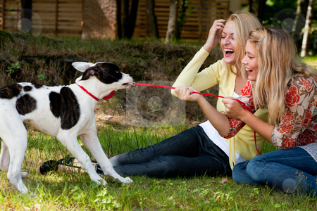 The dog is winning stock photo, Two blond girls and a american bulldog in the park by Frenk and Danielle Kaufmann