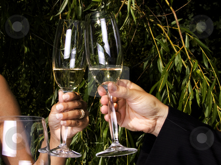 Toast in champagne stock photo, Couple having a romantic toast in champagne by Daniel Kafer