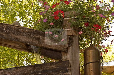 Water Pouring Off Rustic Boards stock photo, Water is pouring off rustic boards with a beautiful hanging flower basket for a beautiful outdoors photo. by Valerie Garner