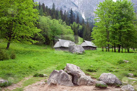 Beautiful Valley in the Tatra Mountains stock photo, Strazynska valley in the Tatra Mountains, Poland. by Rognar