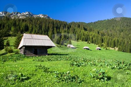 High Mountain Meadow Scenery stock photo, Huts on high mountain meadow  of  the Tatra Mountains in the Tatrzanski National Park, Poland. by Rognar