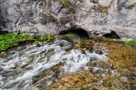 Stream from the Cave stock photo, Pure, crystalline water coming from underground of the Water Cave in Koscieliska Valley, Tatra Mountains, Poland. by Rognar