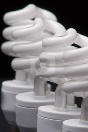 Bulb head stock photo, Heads of four spiral bulbs by Yann Poirier