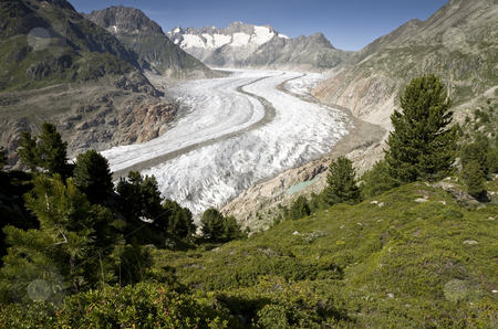 Aletsch Glacier stock photo, The largest glacier in the Alps, canton of Valais, Switzerland, Europe by mdphot