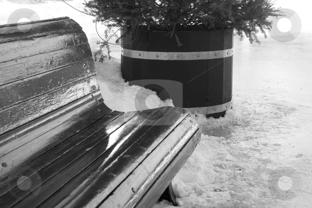 Bench on ice ring stock photo, Close up of bench park on the side of a ice ring by Yann Poirier
