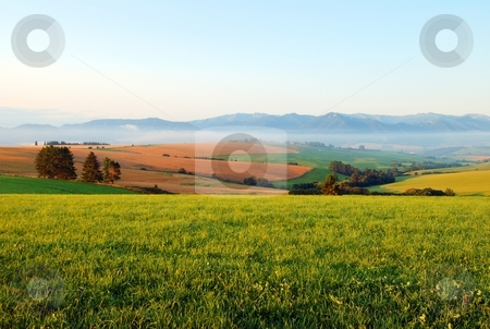 Summer morning on meadows stock photo, Summer morning on meadows with mountains in background by Juraj Kovacik