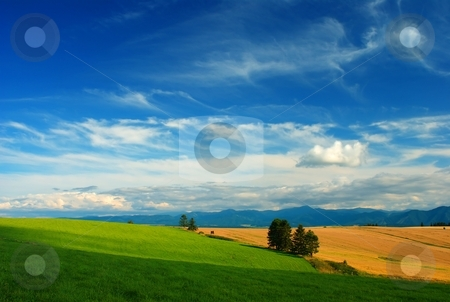 Summer day on meadows and fields stock photo, Summer day on green meadows and yellow fields by Juraj Kovacik
