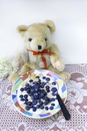 Teddy bear with bowl of blueberries stock photo, Teddy bear with bowl of blueberries and milk by Shirley Mathews