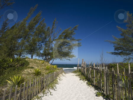 Welcome to the beach stock photo, A sand path to the beach. Great cloudless blue sky. by Ignacio Gonzalez Prado