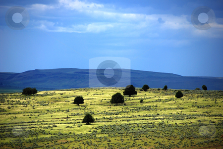 View from Juniper Mountain Road stock photo, USA, Idaho, Owyhee County, Owyhee Uplands Scenic Bypass, View into Malheur County, Oregon, from Juniper Mountain Road by David Ryan