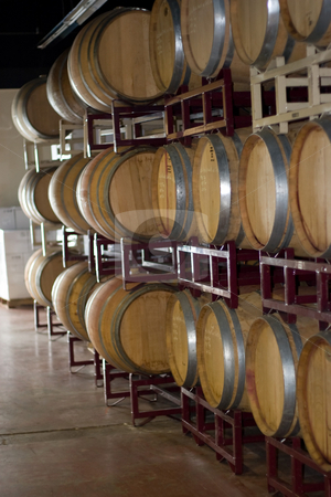 Wine Barrels stock photo, Modern aluminum barrels where grape juice is aged into wine located in a vineyard cellar. by Todd Arena