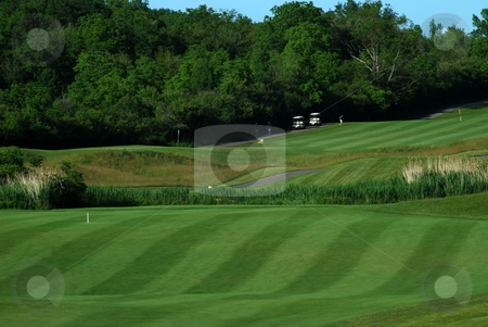 Golf Course stock photo, Rolling green fairways of a golf course by Tim Elliott