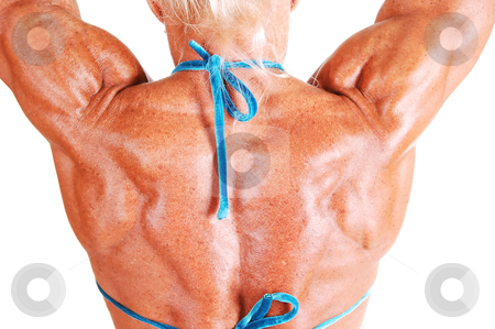 Tha back of a muscular woman. stock photo, An bodybuilding woman shooing her muscular upper back and arms shooing the fantastic muscles and the nice tan, for white background. by Horst Petzold