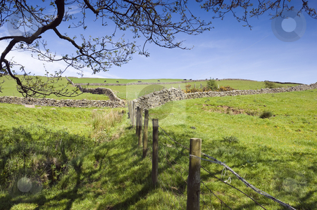 Nidderdale Valley stock photo, View across Nidderdale valley in the Yorkshire Dales England by Stephen Meese