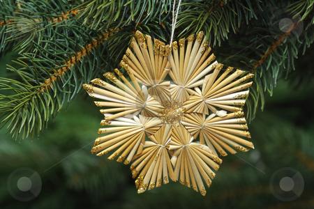 Straw star stock photo, Decorative straw star on green background by Birgit Reitz-Hofmann