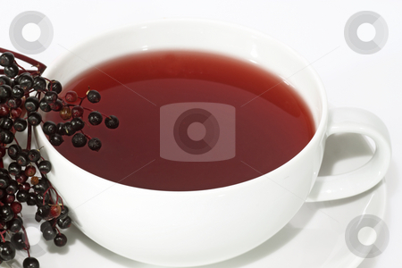 Tea elder stock photo, Closeup from tea elder with fresh fruits. Shot in studio. by Birgit Reitz-Hofmann