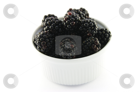Blackberries in a Small Round Dish stock photo, Delicious ripe blackberries in a small white round dish on a white background by Keith Wilson
