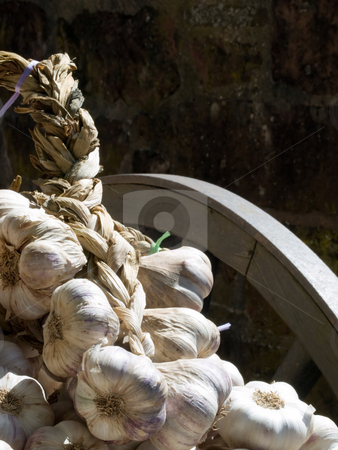 French garlic for sale stock photo, Many fresh healthy garlics in a traditional french market for cooking, Colonges la Rouge, France. by FEL Yannick
