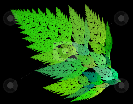 Frond  stock photo, Interesting creation computer fractals program on a black background by citcarsten