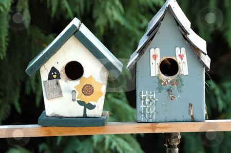 Birdhouses stock photo, Two birdhouses by Tim Elliott